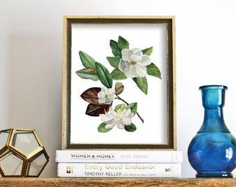 Magnolia Print, printable wall art, Magnolia Print, Floral Print, Watercolor Printable, Botanical Print, Downloadable Flower Art Print