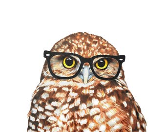 Image result for picture of owl with glasses