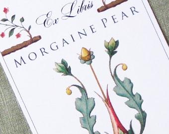 Bookplate with Regency Floral Illustration Jane Austen Style, set of 24.