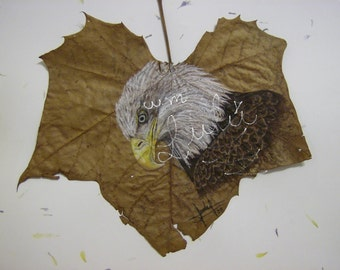 art,print,digital,leaf,drawing,animal,hand crafted, eagle, nature