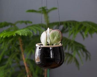 Hanging Planter, Flower Pot, Succulent Planter, House Plants