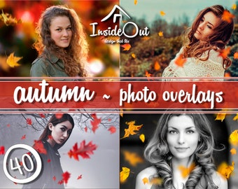Autumn Falling Leaves Overlays Leaf Branch Fall Backdrops Clipart Photoshop PSD Photo Effect Photography Maple JPEG PNG Natural Nature Elm