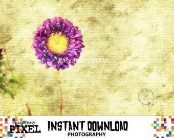 PHOTOGRAPHY, Printable Art, Photography Download, Poster, Wall Decor, Poster, Texture, Flower, Digital Art, INSTANT DOWNLOAD