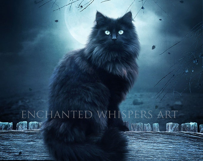 Black cat fantasy art print by enchanted whispers
