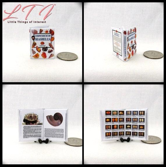 BOOK OF SEASHELLS Miniature Book Dollhouse 1:12 Scale illustrated Readable Book Ocean Shells Sea Fish