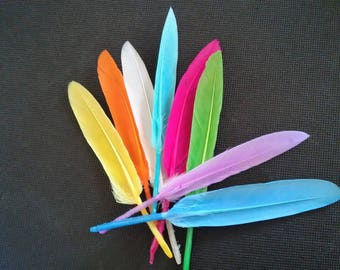 set of 8 feathers colors between 8 and 12 cm earrings