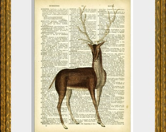 BUCK DEER with ANTLERS recycled book page art print - an upcycled antique dictionary page with an antique deer illustration - wall art