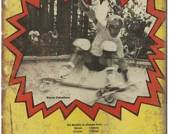 """Independent Steve Caballero Skateboard Pool 10"""" X 7"""" Reproduction Metal Sign S38"""