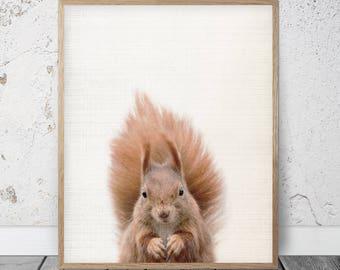Squirrel Print, Squirrel Art, Squirrel Decor, Squirrel Printable, Squirrel Artwork, Squirrel Art Print, Squirrel Photo, Squirrel Photography