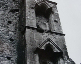 Cashel Architecture with Nests Photograph