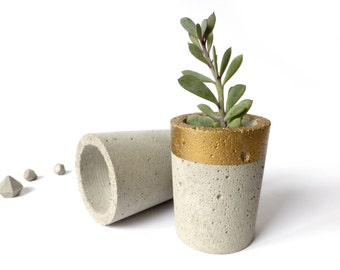 Concrete Pot for Succulent Cactus Grey Gold Urban Industrial Planter Home Decor