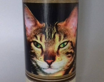Tabby Cat Face Decorated Bottle