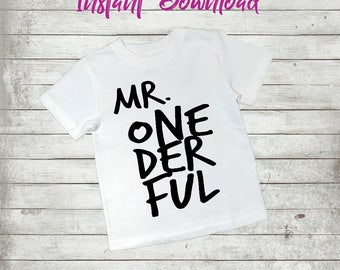 Mr. Onederful, Boy, Mr, First Birthday, Cute, INSTANT Download, Printable Iron On Transfer, Digital, T shirt, Onesie