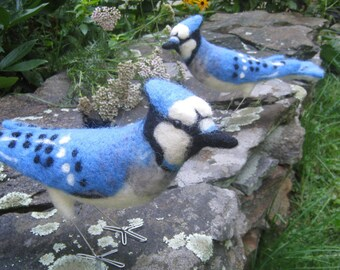 Mr Blue Jay, Nadel gefilzt Vogel Kunstskulptur
