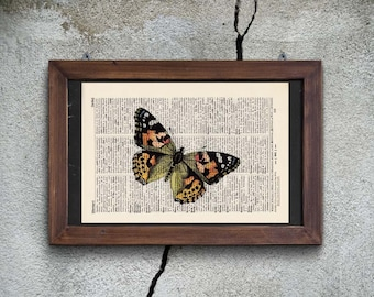 Pressure - BUTTERFLY No.. 5 - antique book page