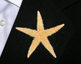 On Sale Beach Wedding Starfish Boutonniere, Real Phillipine Starfish