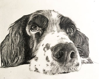 Personalised Pet Portrait- Graphite Pencil drawing