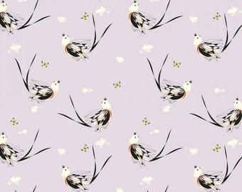 Scissor-Tailed Flycatcher Knit 100% Organic Cotton by Birch (Western Birds Collection)