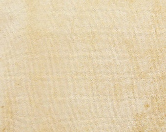"Beige Velvet Fabric, Stretchy Velvet, Upholstery Fabric, Apparel Fabric, 60"" Inch Wide Fabric By The Yard ZVE94J"