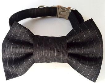 Pinstripe Dog Collar and Bowtie Set