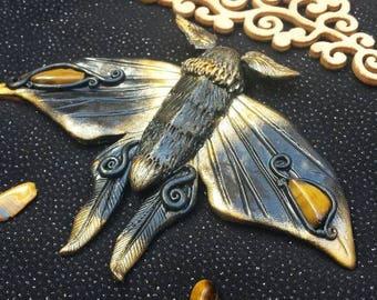 Magic moth decorated with eye/magical moth with Tigereye gemstones