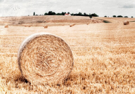 End of summer, Landscape photography, Summer, Rustic Farmhouse, Harvest, french country home, farmhouse decor, Yellow decor