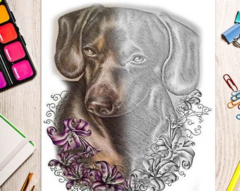 Printable coloring page, Adult Coloring Page, Instant download coloring, dachshund coloring page, coloring pages, coloring book for adults