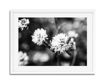 Digital download - photography in black and white - spring in Paris - wall decor