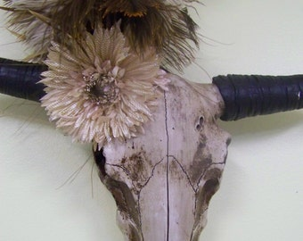 Taxidermy Longhorn Skull-Decorated Skull-Mancave Decor-Rustic Wall Hanging-Christmas Gift