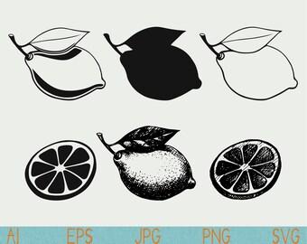 lemon svg/Citrus/Lemon clipart/silhouette/png/cut file/vinyl/silhouette cameo/cricut/vector/clipart/stencil/logo/doodle/sketch/hand drawn