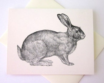 Rabbit Note Card Set of 10 in White or Light Ivory with Matching Envelopes