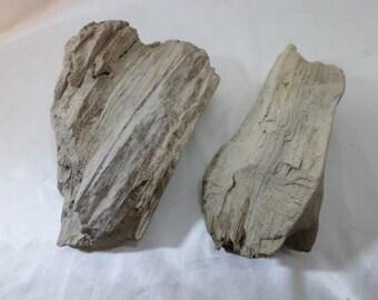 Driftwood Pieces - Beach Wood - Beach Decor - Craft Supplies - 2 Great Drift Wood Pieces