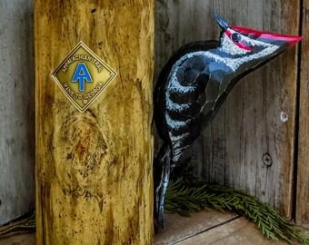 Trail Birds (Pileated Woodpecker Appalachian Trail)