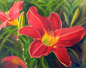 Red Daylily Art Watercolor Painting Print by Cathy HIllegas, 12x16, watercolor print, watercolor daylily, red green art, watercolor floral