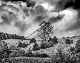 Storm Brewing Digital Photograph