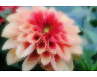 Pink Flower 2 - nature photography
