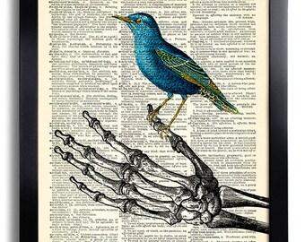 Skeleton Hand Art Blue Bird Art Print Skeleton Poster Gothic Skull Artwork, Anatomy Wall Decor Skeleton Wall Decal Cool Art Decor 632