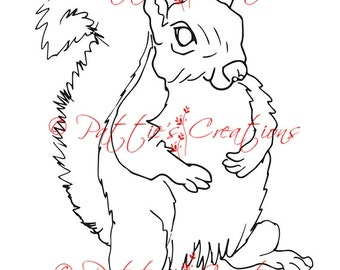 Simon The Squirrel
