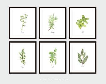 Culinary Herbs Art Prints - Kitchen Herbs Wall Art - Oregano Basil Thyme Art - Modern Rustic Home Decor - Choose From 10 Herbs - Aldari Art