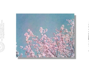 Pink Blossoms Cherry Tree Branches Pink Blooms Pink Cherry Blossoms Blue Sky. Shabby Chic Vintage Cottage Finish. Signed Photo Art