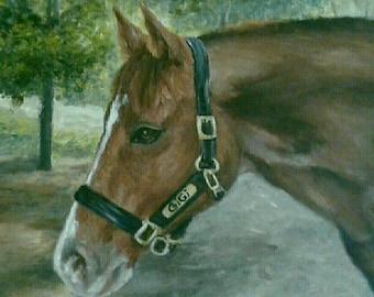 "PET PORTRAIT - Custom Pet Painting in Acrylics or Pastel-Original Horse Art 20"" x 24"""