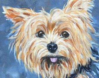Portraits of Yorkshire Terriers