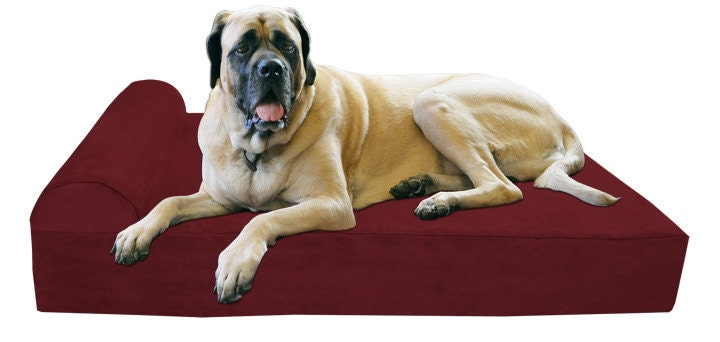 Xl Big Barker 7 Orthopedic Dog Bed For Large Dogs 52
