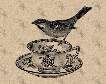 Vintage Image Bird Teacup Instant Download picture Digital printable clipart  graphic stickers, scrapbooking, burlap, kraft etc HQ 300dpi