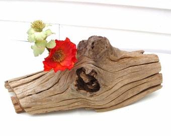 Cypress Driftwood | Reclaimed Cypress | Wood Sculpture | Natural Wood Art | Cypress Wood