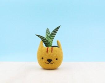 Cute planter | Kawaii kitty gift, gift for her, Small succulent pot, Felt succulent planter, Neko Atsume special edition, Cat head planter