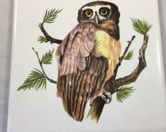 Vintage Hyalyn Owl Tile Trivet Wall Decor