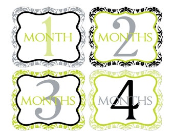 12 Monthly Baby Milestone Waterproof Glossy Stickers - Die Cut Shape - Just Born - Newborn - Weekly stickers available - Design M020-02