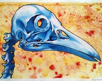 ORIGINAL ARTWORK: Corvus corone