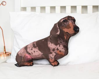 Rudy the Sausage / Wiener dog pillow - Illustrated velvet Dachshund cushion